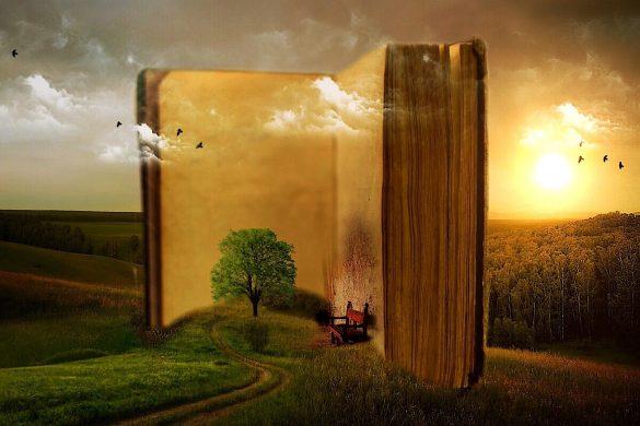 Книга в полето