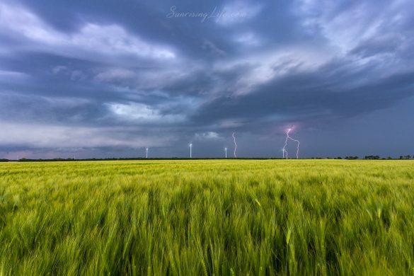 Зелени житни полета с гръмотевична буря около Каварна