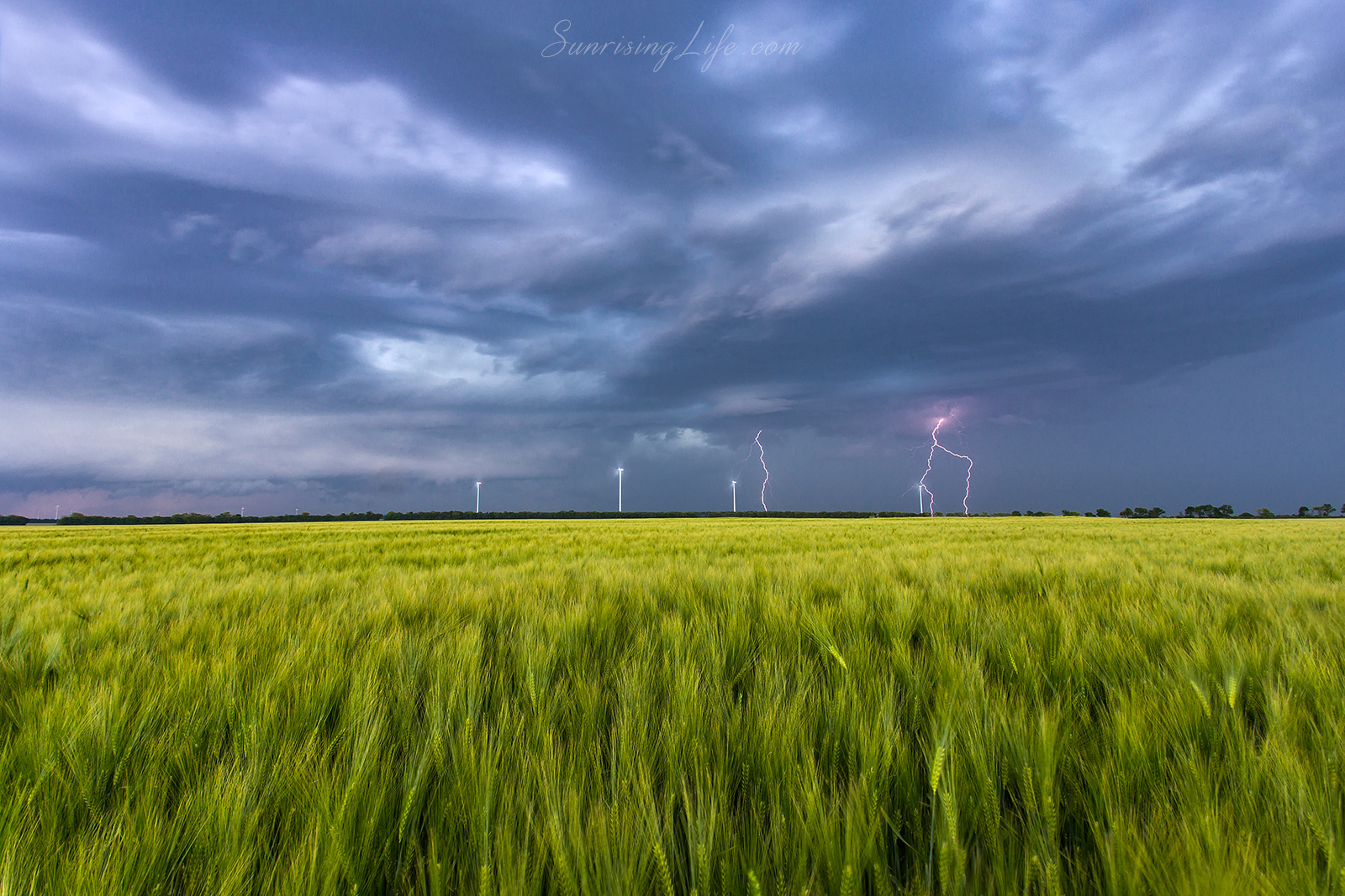 Storm in the field