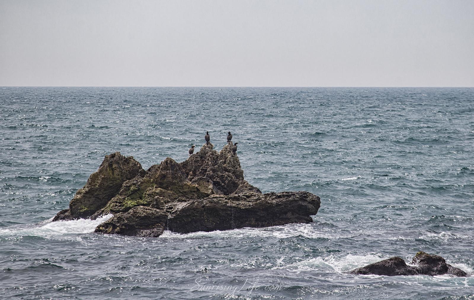 Скалите около Тюленово
