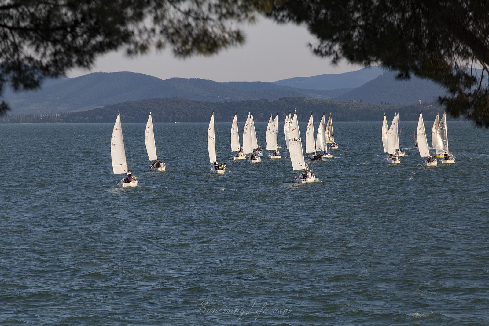 Състезание във водата на Езерото Тразимено