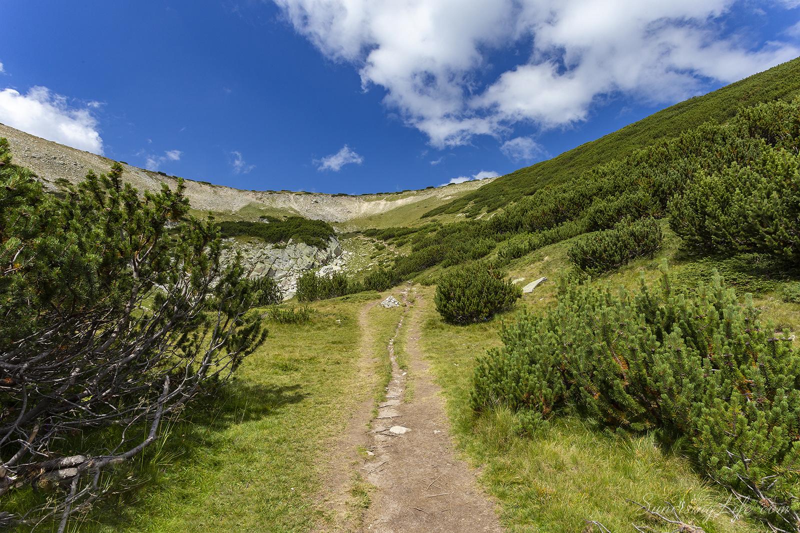 клекове по пътя към връх полежан и връх безбог