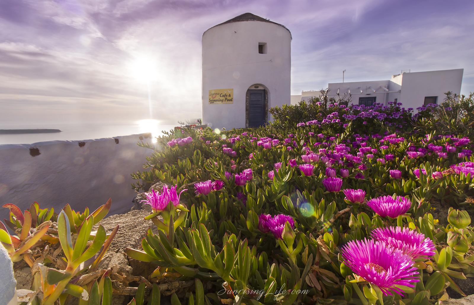 Цветя в Санторини, Забележителности в Санторини