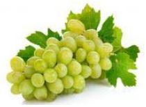 Есенни плодове - грозде