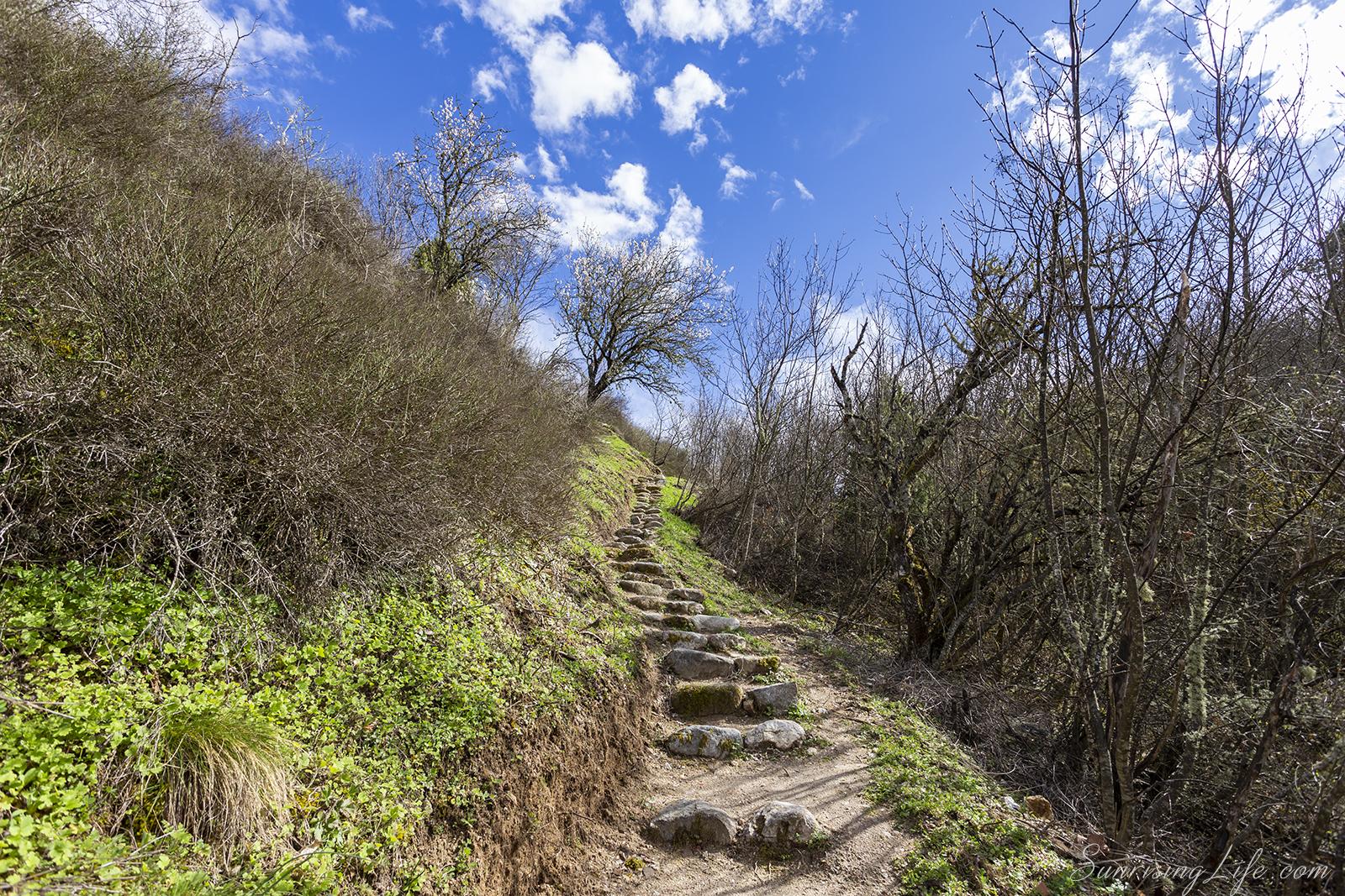 Пътека към Света зона в Мелник
