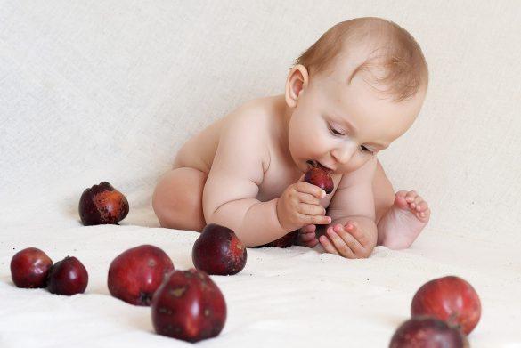 захранване водено от бебето, педагогическо захранване, педиатрично захранване