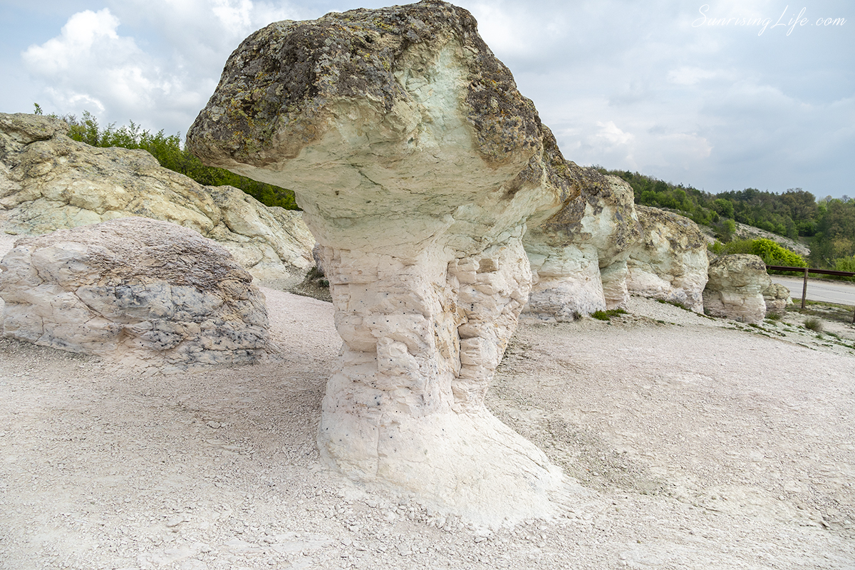 каменните гъби и каменната сватба
