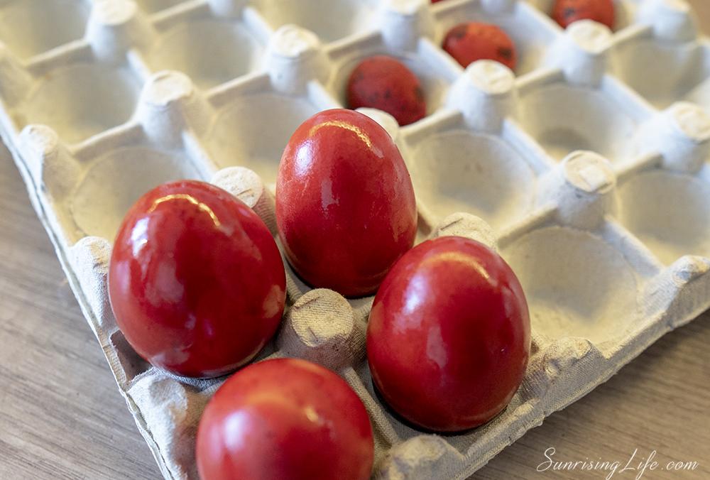 корен от брош за червена боя за яйца